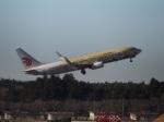 ポカール長田さんが、成田国際空港で撮影した中国国際航空 737-89Lの航空フォト(飛行機 写真・画像)