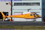 Chofu Spotter Ariaさんが、東京ヘリポートで撮影したオールラウンドヘリコプター AS350B Ecureuilの航空フォト(飛行機 写真・画像)