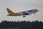 ANA744Foreverさんが、成田国際空港で撮影したセブパシフィック航空 A319-111の航空フォト(写真)