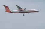 北の熊さんが、新千歳空港で撮影したチェジュ航空 DHC-8-402Q Dash 8の航空フォト(写真)