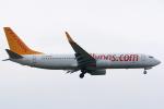 Tomo-Papaさんが、フランクフルト国際空港で撮影したペガサス・エアラインズ 737-82Rの航空フォト(写真)
