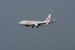 北の熊さんが、新千歳空港で撮影した香港エクスプレス 737-84Pの航空フォト(飛行機 写真・画像)