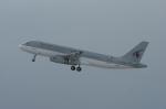 北の熊さんが、新千歳空港で撮影したカタールアミリフライト A320-232の航空フォト(飛行機 写真・画像)