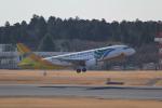 ANA744Foreverさんが、成田国際空港で撮影したセブパシフィック航空 A320-214の航空フォト(写真)