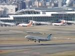 わたくんさんが、福岡空港で撮影したエアプサン A320-232の航空フォト(写真)