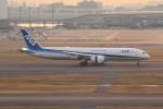 アイスコーヒーさんが、羽田空港で撮影した全日空 787-9の航空フォト(飛行機 写真・画像)