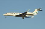 Koenig117さんが、羽田空港で撮影したアメリカ個人所有 G650 (G-VI)の航空フォト(写真)