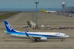 パンダさんが、中部国際空港で撮影した全日空 737-881の航空フォト(飛行機 写真・画像)