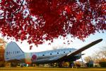 PASSENGERさんが、岐阜基地で撮影した航空自衛隊 C-46A-40-CUの航空フォト(写真)