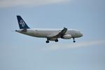 snow_shinさんが、クライストチャーチ国際空港で撮影したニュージーランド航空 A320-232の航空フォト(写真)