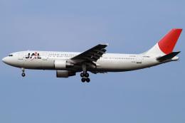 航空フォト:JA016D 日本航空 A300-600