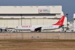 tsubasa0624さんが、成田国際空港で撮影したイースター航空 737-86Nの航空フォト(写真)