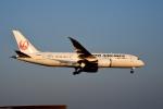 tsubasa0624さんが、成田国際空港で撮影した日本航空 787-8 Dreamlinerの航空フォト(写真)
