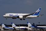 tsubasa0624さんが、成田国際空港で撮影した全日空 787-8 Dreamlinerの航空フォト(写真)