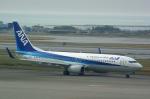 rjnsphotoclub-No.07さんが、那覇空港で撮影した全日空 737-881の航空フォト(飛行機 写真・画像)