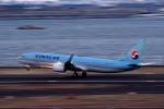 tsubasa0624さんが、羽田空港で撮影した大韓航空 737-9B5/ER の航空フォト(飛行機 写真・画像)
