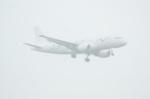 北の熊さんが、新千歳空港で撮影したプリヴァジェット A319-115CJの航空フォト(写真)