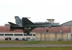 tsubameさんが、岩国空港で撮影したアメリカ海軍 F/A-18A Hornetの航空フォト(写真)
