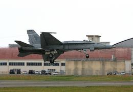 tsubameさんが、岩国空港で撮影したアメリカ海軍 F/A-18A Hornetの航空フォト(飛行機 写真・画像)
