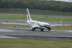 北の熊さんが、新千歳空港で撮影したインターナショナル・ジェットクラブ 737-7GV BBJの航空フォト(飛行機 写真・画像)