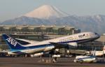 そばぬこさんが、羽田空港で撮影した全日空 787-8 Dreamlinerの航空フォト(写真)