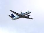U.Tamadaさんが、マイアミ国際空港で撮影したIBCエアウェイズ 340の航空フォト(写真)