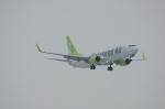 北の熊さんが、新千歳空港で撮影したソラシド エア 737-86Nの航空フォト(飛行機 写真・画像)