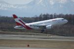 北の熊さんが、新千歳空港で撮影したユニバーサルエンターテインメント A318-112 CJ Eliteの航空フォト(写真)