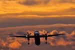 吟遊詩人さんが、伊丹空港で撮影した全日空 DHC-8-402Q Dash 8の航空フォト(写真)