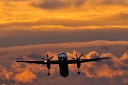 吟遊詩人さんが、伊丹空港で撮影した全日空 DHC-8-402Q Dash 8の航空フォト(飛行機 写真・画像)
