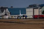 tsubasa0624さんが、厚木飛行場で撮影した海上自衛隊 YS-11-113Mの航空フォト(飛行機 写真・画像)