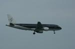 北の熊さんが、新千歳空港で撮影したスターフライヤー A320-214の航空フォト(写真)