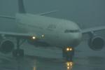 rjnsphotoclub-No.07さんが、静岡空港で撮影したデルタ航空 A330-323Xの航空フォト(飛行機 写真・画像)