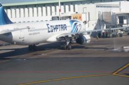鼻たれ小僧さんが、ムハンマド5世国際空港で撮影したエジプト航空 A321-231の航空フォト(飛行機 写真・画像)