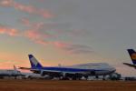 Flying Elvisさんが、テューペロ・リージョナル空港で撮影した全日空 747-481(D)の航空フォト(写真)