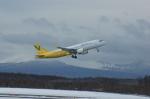 北の熊さんが、新千歳空港で撮影したバニラエア A320-214の航空フォト(写真)