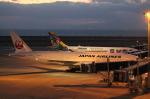 RAOUさんが、中部国際空港で撮影した日本航空 777-246/ERの航空フォト(写真)