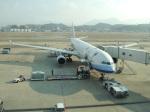 シフォンさんが、福岡空港で撮影したチャイナエアライン A330-302の航空フォト(飛行機 写真・画像)