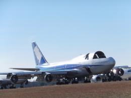 夷月さんが、テューペロ・リージョナル空港で撮影した全日空 747-481(D)の航空フォト(飛行機 写真・画像)