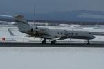 北の熊さんが、新千歳空港で撮影したTrans Exec Air Service  G-V Gulfstream Vの航空フォト(写真)