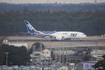SKYLINEさんが、成田国際空港で撮影した全日空 787-8 Dreamlinerの航空フォト(写真)