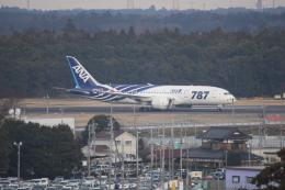 SKYLINEさんが、成田国際空港で撮影した全日空 787-8 Dreamlinerの航空フォト(飛行機 写真・画像)