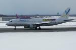 北の熊さんが、新千歳空港で撮影したバニラエア A320-211の航空フォト(写真)