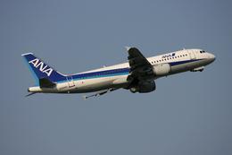 tsubameさんが、福岡空港で撮影した全日空 A320-211の航空フォト(飛行機 写真・画像)