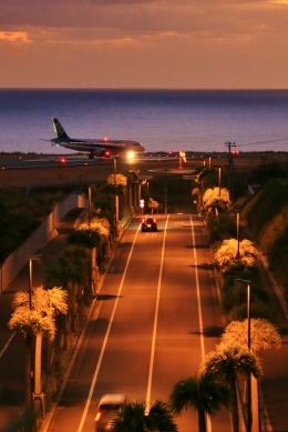 八丈島空港 - Hachijo Jima Airport [HAC/RJTH]で撮影された全日空 - All Nippon Airways [NH/ANA]の航空機写真