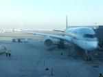 ドーハ・ハマド国際空港 - Hamad International Airport [DOH/OTHH]で撮影されたカタール航空 - Qatar Airways [QR/QTR]の航空機写真
