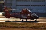tsubasa0624さんが、東京ヘリポートで撮影した東京消防庁航空隊 AS365N2 Dauphin 2の航空フォト(写真)