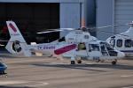tsubasa0624さんが、東京ヘリポートで撮影した東邦航空 AS365N2 Dauphin 2の航空フォト(写真)