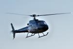 tsubasa0624さんが、東京ヘリポートで撮影したオートパンサー AS350B Ecureuilの航空フォト(飛行機 写真・画像)