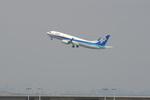 kanadeさんが、羽田空港で撮影したエアーニッポン 737-881の航空フォト(写真)